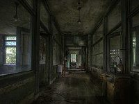 Black Asylum Escape
