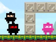 Ninja Cube