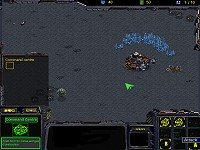StarCraft - War Of Honor
