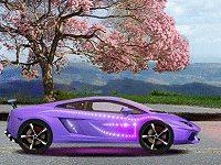 Fancy Up My Luxury Car