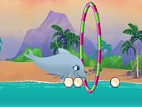 My Dolphin Playday